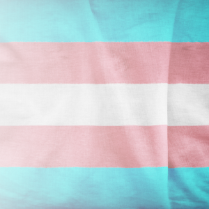 Transgender flag. The flag has five horizontal stripes: the centre stripe is white; above and below it are pink stripes; and the top and bottom stripes are blue